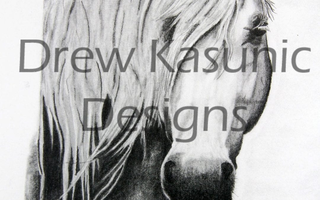 Horse Art Hand drawn by Drew Kasunic