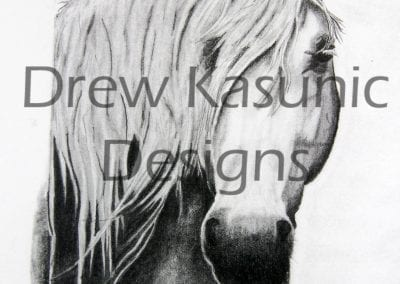 Drew Kasunic drew in pencil this horse bust.