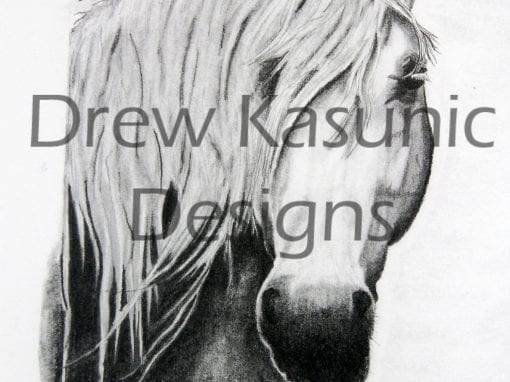 Horse Art Hand drawn by Drew Kasunic